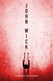 Training 'John Wick'