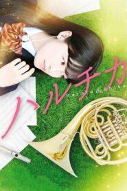 Haruta & Chika