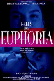 Feels Like Euphoria
