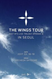 2017 BTS LIVE TRILOGY EPISODE III: THE WINGS TOUR IN SEOUL