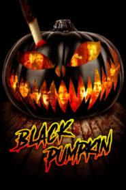 Black Pumpkin